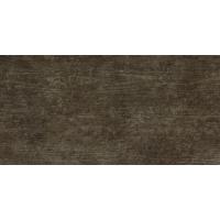 FOSSIL WOOD marone 30x60 | 02S | rekt | R10