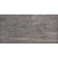 OREGON grey 30x60   02S   rekt   R10