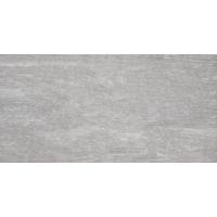 OREGON light grey 30x60 | 11S | rekt | R10