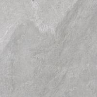 KANSAS grey 2.0cm | 60x60 | 02S | rekt | R11-B