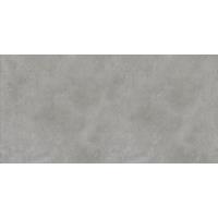 BERLIN grey 30x60 | 01S | R9